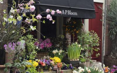 Algunas de nuestras floristerías favoritas